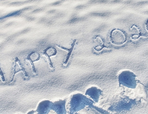 Happy 2020 in the snow…
