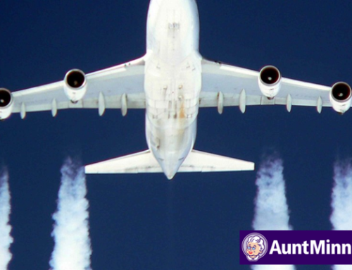 Study: RSNA should tackle air travel carbon footprint