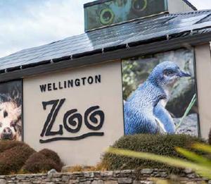 polygon_wellington_zoo